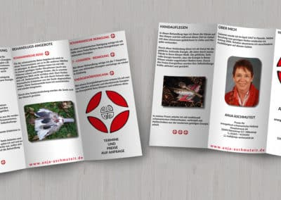 Anja Aschmuteit – Flyer energetische-schamanische Heilung