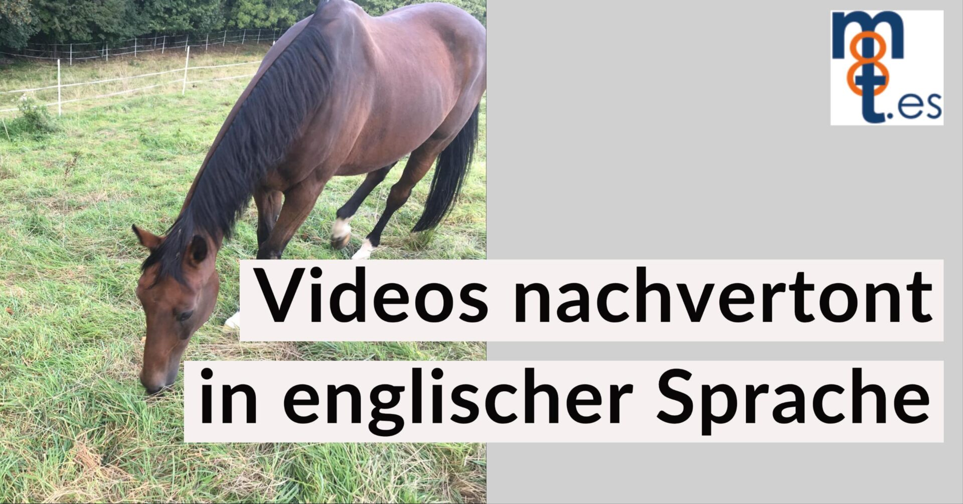 Stuckenberg-Videos-nachvertont